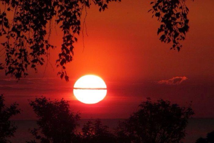 Enjoying The Sun Sunset