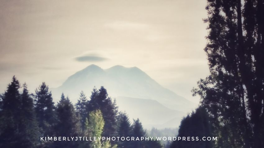 It looks like the lenticular cloud over Mount Rainier is really into UFOs this morning. Sky Landscape Mountain Outdoors Nature Tree KimberlyJTilley Clouds