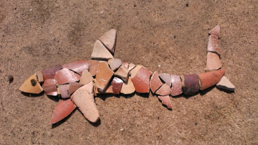 Shark mosaic made from cracked pottery on Brownsea Island, Dorset Shark Mosaic Pottery Cracked Brownsea Island Brownseaisland Dorset Art ArtWork