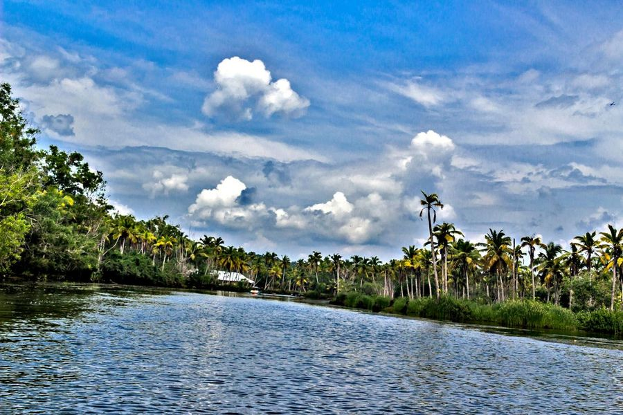 Paradise Poovar EyeEm Nature Lover EyeEm Gallery Keraladiaries EyeEm Selects Tree Cloud - Sky Palm Tree Tropical Climate Vacations Sky Water Tranquility Beauty In Nature Nature Outdoors Travel No People Tourism