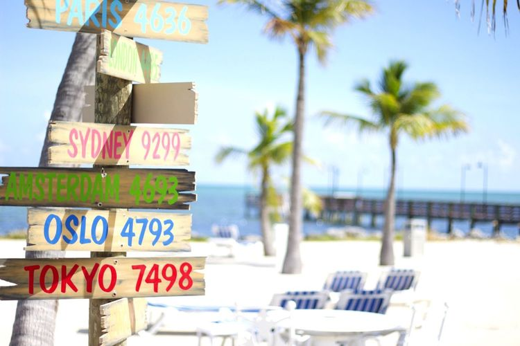 Maravillosos Cayos Beach Palm Tree Information Sign Sign Board Vacations Shore Tree Tranquil Scene The Keys Canon 1.8 Out Of Focus Tropical Paradise Relax Relaxing First Eyeem Photo