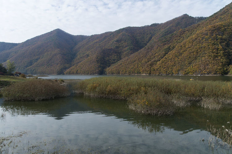 autumn landscape at Janggye Tourism Place in Okcheon, Chungbuk, South Korea Autumn Autumn River Janggye Okcheon Riverside Autumn Riverside Beauty In Nature Day Lake Landscape Mountain Mountain Range Nature No People Outdoors Reflection River Riverside Photography Scenics Sky Tranquil Scene Tranquility Water Waterfront