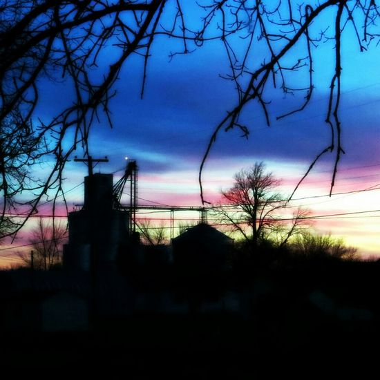 Doo,doo, doo,Lookin' out my back door. I used the Michael Orton effect in picasa 3.9 and it made my photo look sorta similar to a Josh Adamski It's Follow Friday! Sunset Orton Effect My Best Photo 2014