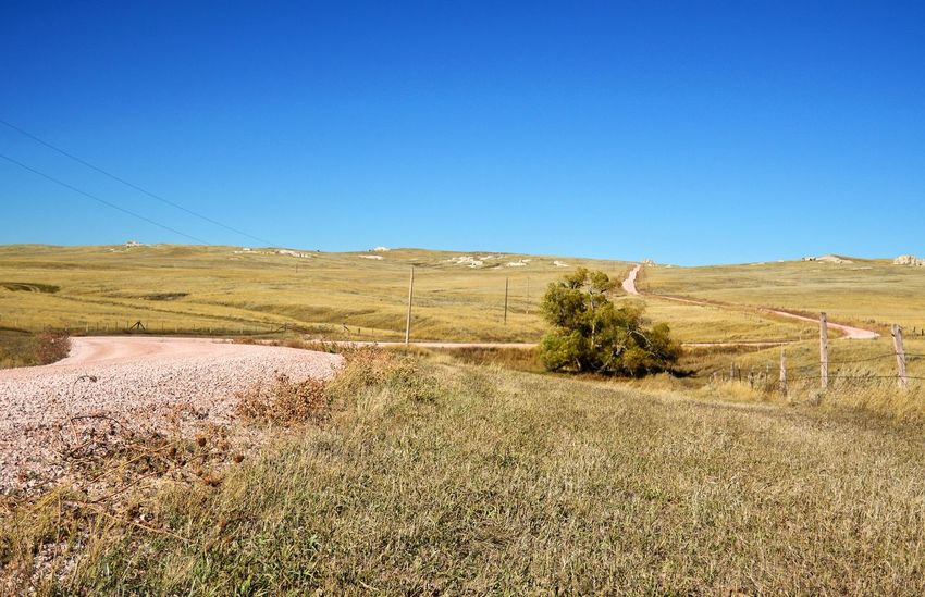 Road winding around tree Power Poles Wooden Post Power Wires County Road West Of Lusk Wyoming Grass Fence In The Distance. Outdoors Clear Sky Rural Scene Blue Sunny A New Beginning