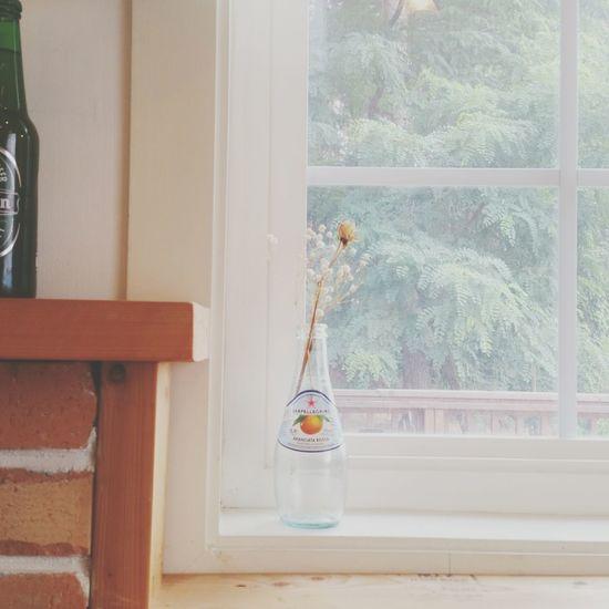 Dry Flower  Restaurant Warm PartTimeJob Pastel Colors Juice Bottle RedOrange Morning Morning Flower