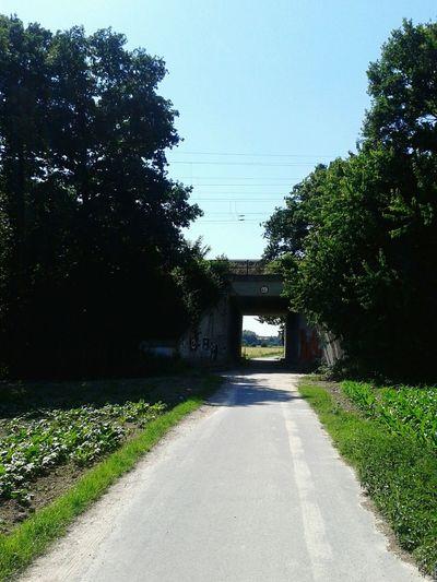 Draußen Im Grünen gestern inliner raus geholt dann On Tour durch die Felder mit meinem Schatz in VIE/MG ,Deutschland. EyeEm Nature Lover