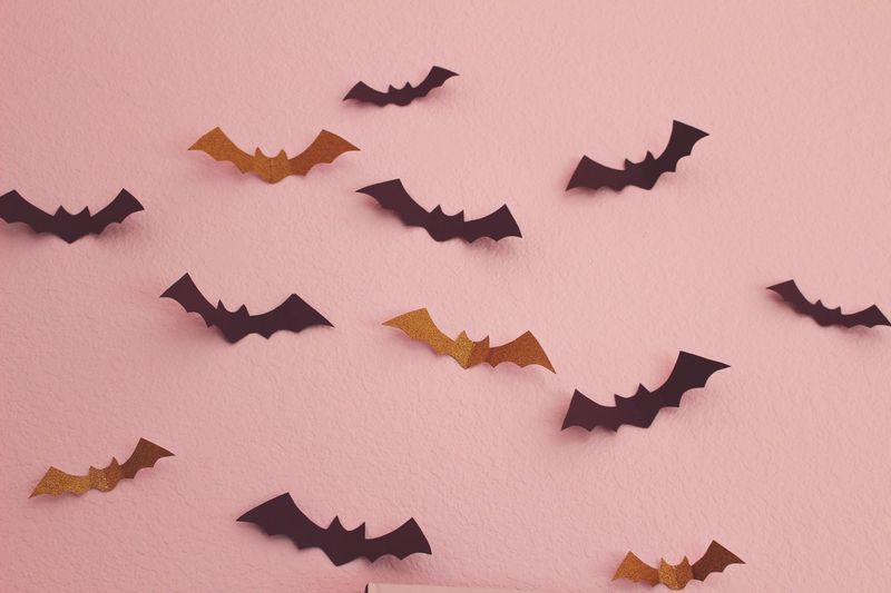 Halloween Bat Animal Bats Wall Decoration