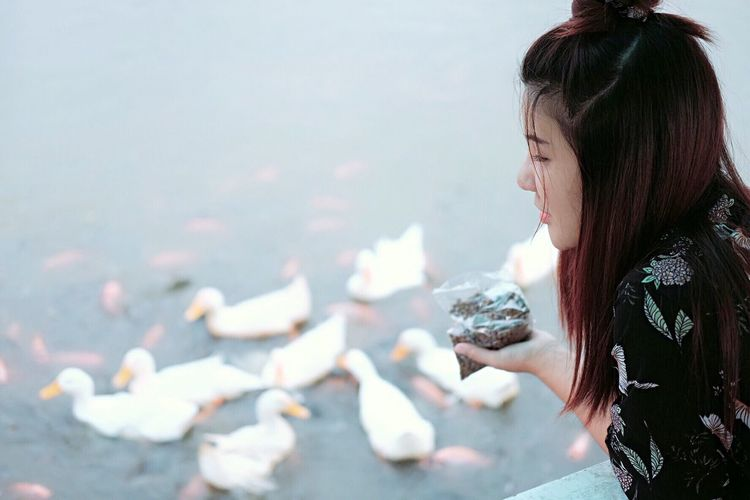 Close-up of young woman feeding duck swimming in lake