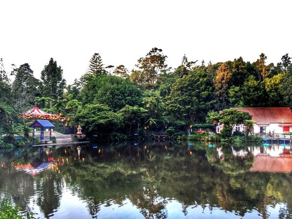 Reflections on the lake at Pukekura Park, New Plymouth, NZ. Lake Lake View Reflections Lights Landscape Landscape_photography Colours Trees New Plymouth Newzealandphotography Buildings Building Reflections