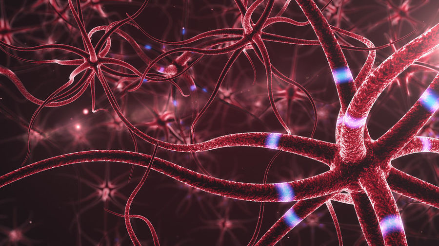 3d Rendering Experiment Fibre HEAD Pulse Red Science Synaptic Adn Anatomy Blood Blue Brain Cells Close-up Glowing Impulse Nerves Nervous Neurology Neuron Neurons Neuroscience Synapses System