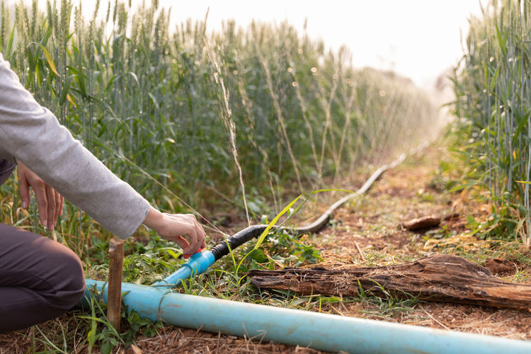 Midsection of woman holding water pipe in farm