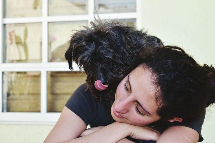 Close-up of black dog yawning