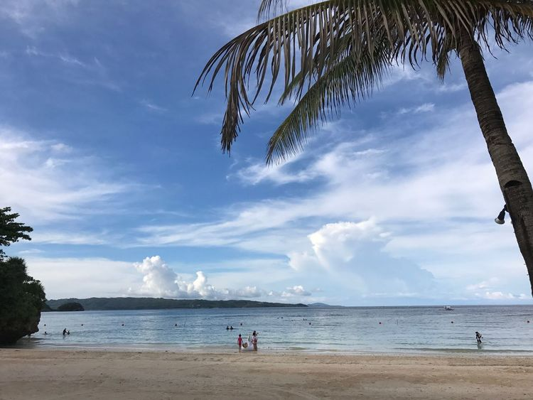 Sea Beach Palm Tree Sky Cloud - Sky Horizon Over Water Tranquil Scene Vacations Travel Destinations Boracay