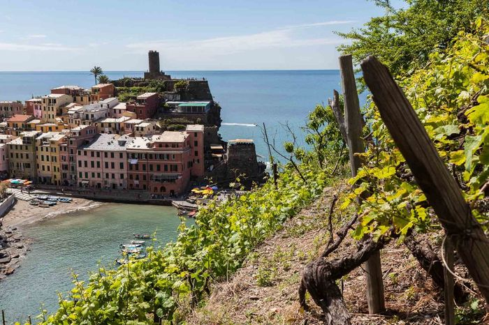 5 Terre Architecture Beach Beauty In Nature Building Exterior Built Structure City Day Growth Horizon Over Water Italy Liguria Mediterranean  Nature No People Outdoors Sea Sky Tourism Travel Destinations Tree Water Wine Wineyard