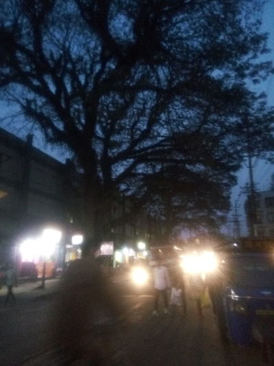Pastel Power First Eyeem Photo Nature With Busy Traffic Evening Life Of Nature Tree To Get Shade