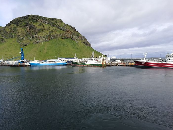 Iceland Islandia Island Vestmannaeyjar Heimaey Westman Island Bay Suðurland Boat Harbor Harbour Water Nautical Vessel Sea Moored Harbor