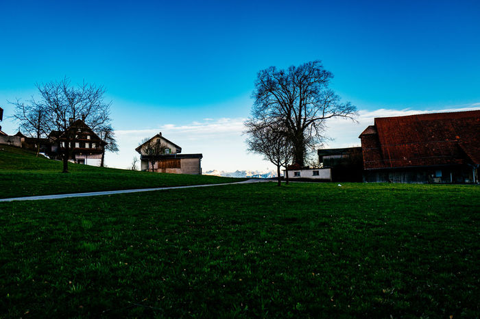 Architecture Bare Tree Blue Building Exterior Built Structure Clear Sky Day Field Gormund Grass Grassy Growth House Kapelle Landscape Lawn Nature Residential Building Residential Structure Sky Sunlight Tree