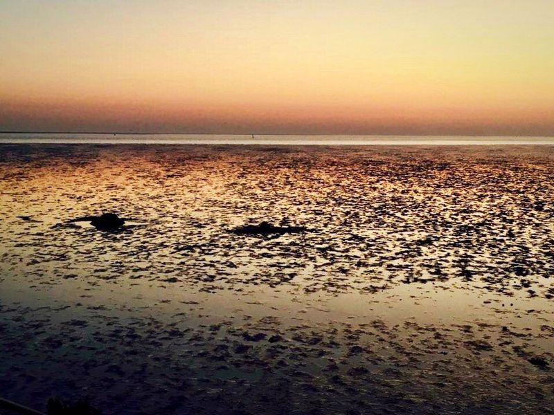 ebb_and_flow. Sunset Sea Beach Scenics Beauty In Nature Horizon Over Water Tranquility Water IPhoneography Sand No People Reflection Sky Silhouette Iphonephotography Evening Light Water_collection Beauty In Nature Golden Hour Ebb And Flow Landscape Landscape_Collection Landscape_photography Landscapes Evening Sky