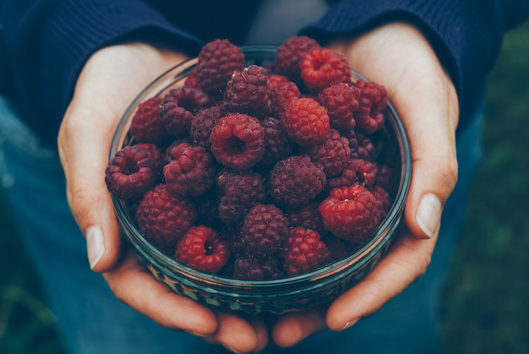 bowl with fresh raspberrys Bowl Close-up Day Food Food And Drink Freshness Fruit Healthy Eating Healthy Food Holding Human Body Part Human Hand One Person Organic Food Outdoors People Raspberry Red Superfood Fresh On Market 2017