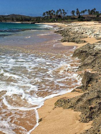 Hawaiian Beauty Ocean And Sky Beachfront Beachwalk Ocean Views Tropical Islands Tropical Beauty