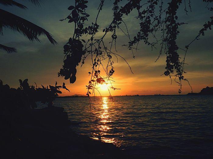 Art Is Everywhere Sunset Sea Silhouette Tranquil Scene Beauty In Nature Tranquility Horizon Over Sea EyeEm Best Shots - Nature Tree Nature Reflection Sky Beach No People Sun Outdoors Travel Destinations EyeEm Beautiful Nature Pictures Tell A Story EyeEm Gallery Sunset Silhouettes Sunset #sun #clouds #skylovers #sky #nature #beautifulinnature #naturalbeauty #photography #landscape เวลาที่มี ก็ดูน้อย เสียเหลือเกิน กับ พระอาทิตย์ตก Love Nature