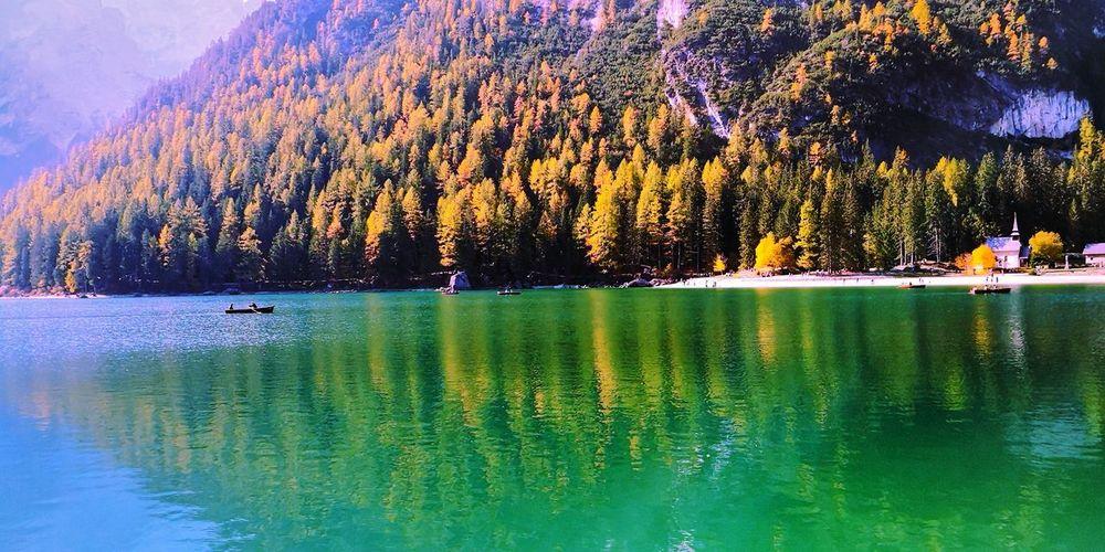Fall Beauty Fall Colors Fall EyeEm Nature Lover Braies Lago Di Braies Shiny Water Tree Water Sky Lake Lakeshore Lakeside