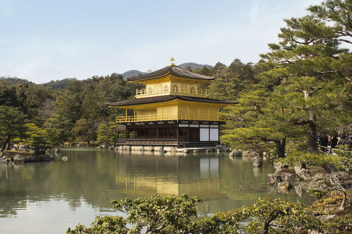 Architecture Buddhism Built Structure Cultural Cultural Heritage Day Garden Gold Gold Colored Golden Temple Japan Kyoto,japan Nature No People Outdoors Religion Royalty Sky Tree
