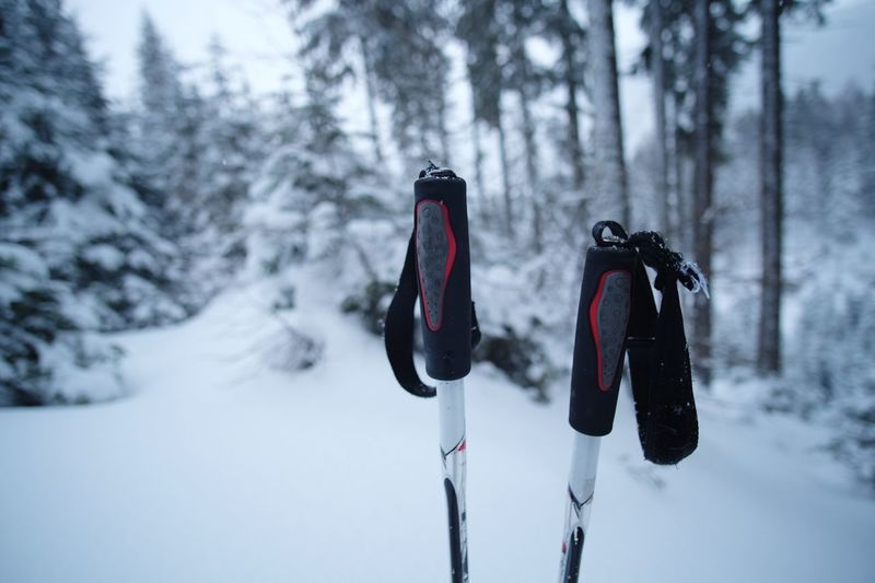 Close-up of ski poles snow covered land