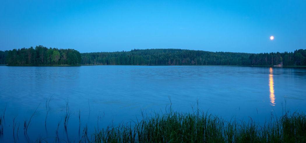 Moon Blue Grass Idyllic Lake Nature Nigth  No People Non-urban Scene Outdoors Plant Sky Tree Water