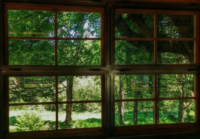 EyeEm Nature Lover Taking Photos Green Nature Window View Enjoying Life Santa Fe Del Montseny Montseny Tan solo de vez en cuando las cosas recobran su belleza 💫💫
