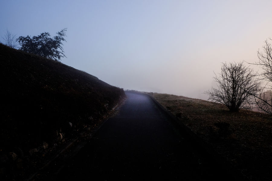 Be. Ready. Decisions Determination Misty Morning Morning Light Purpose Bare Tree Beauty In Nature Clear Sky Darkness And Light Future Journey Landscape Nature No People Outdoors Resolution Road Scenics Sky The Way Forward Tranquil Scene Tranquility Tree