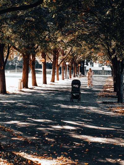 Rear view of women sitting in park
