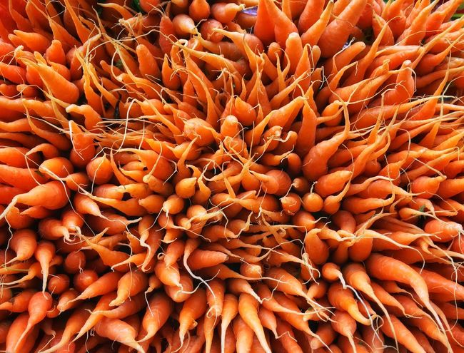 Raw Food Carrots No People Abundance Day Food Healthy Eating Plant Fruit Beauty In Nature Nature Food And Drink High Angle View