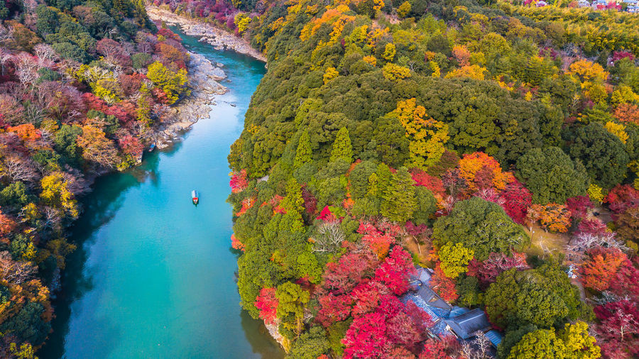 Aerial view of boat on river against trees in forest during autumn