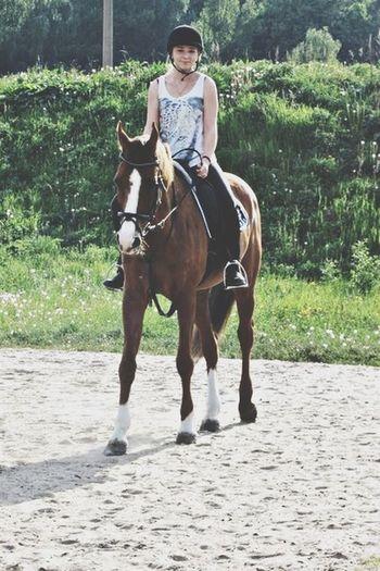 Horse Nature Girl Happy