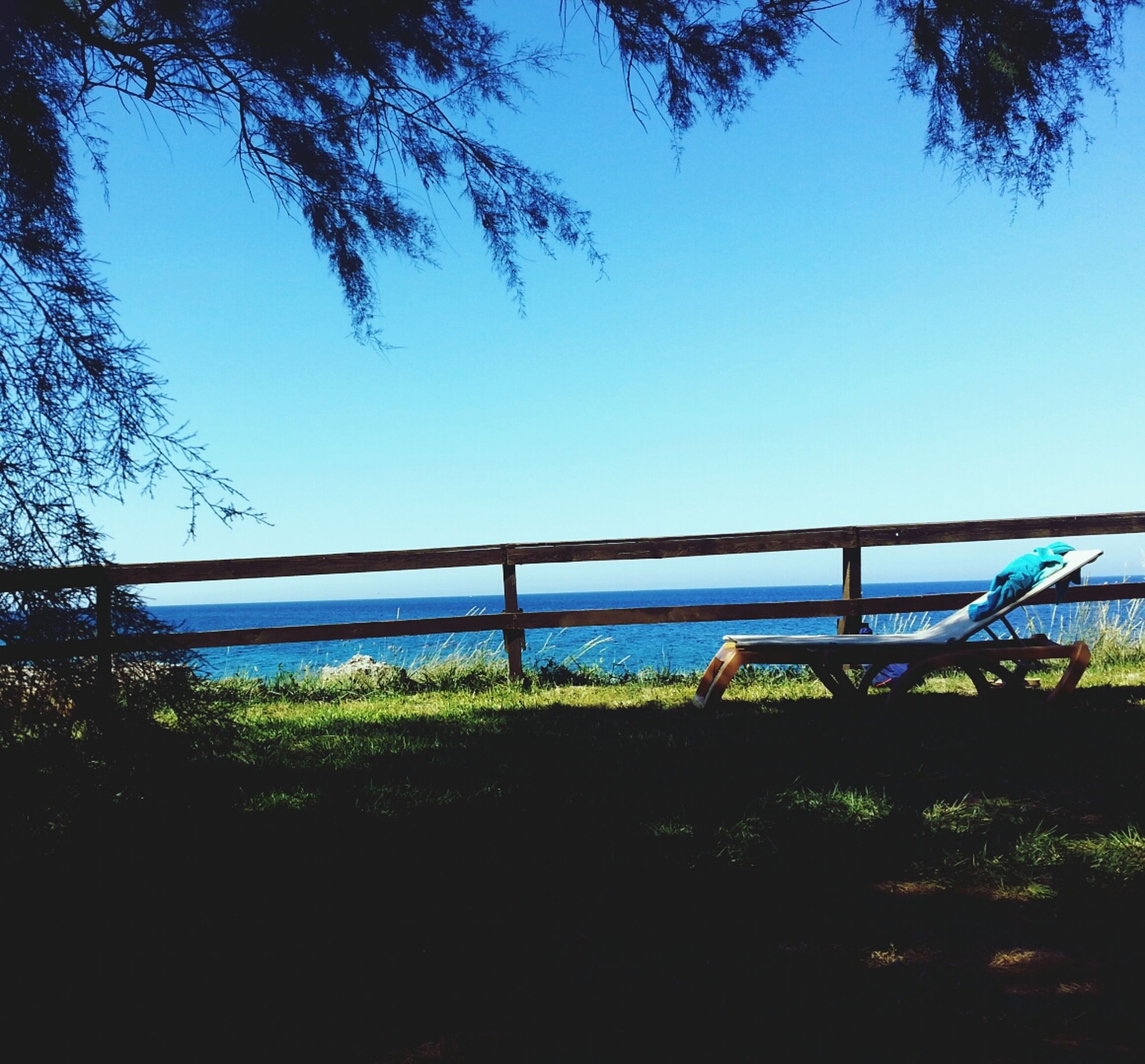 water, clear sky, tree, blue, copy space, tranquility, tranquil scene, nature, beauty in nature, sea, scenics, growth, sunlight, lake, plant, beach, outdoors, day, idyllic, railing