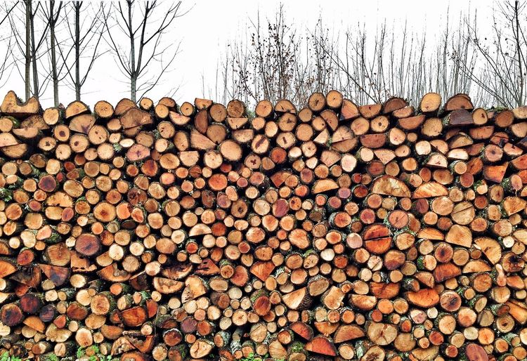 Leña Wood Abundance Log Timber Stack Deforestation Forest Wood - Material Nature