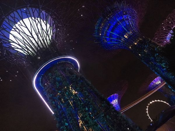 Night Illuminated Architecture Low Angle View Built Structure Fish-eye Lens Blue No People Outdoors Building Exterior Nature City Sky