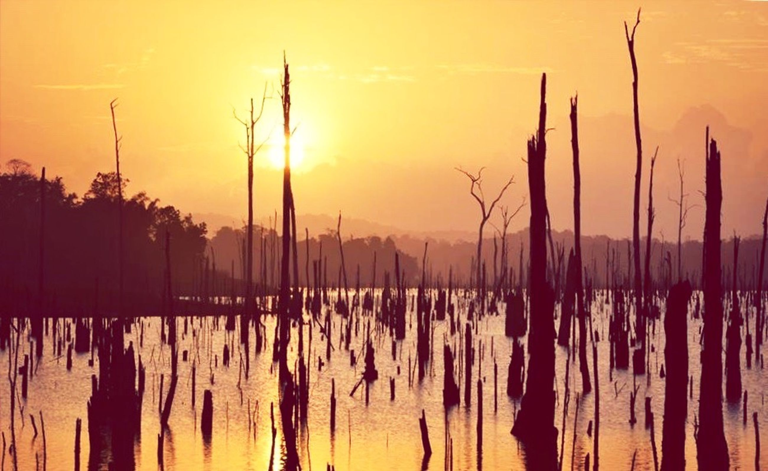 sunset, orange color, tranquility, tranquil scene, silhouette, scenics, beauty in nature, water, nature, reflection, idyllic, sky, sun, lake, wooden post, outdoors, no people, landscape, majestic, non-urban scene