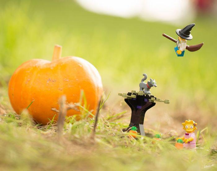 Whaou  Belle Récolte ! Halloween Orange Potiron Citrouille LEGO Simpson Sorcière