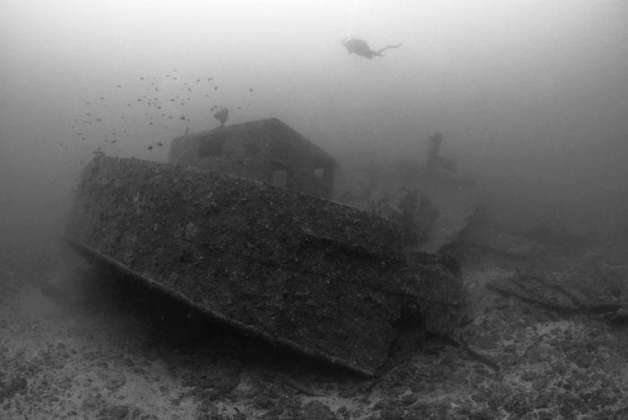 Underwater Photography Okinawa OKINAWA, JAPAN SCUBA Underwaterphotography Blaclandwhite Blackandwhite Black And White Black & White Blackandwhite Photography Black And White Photography Wwi WorldwarI
