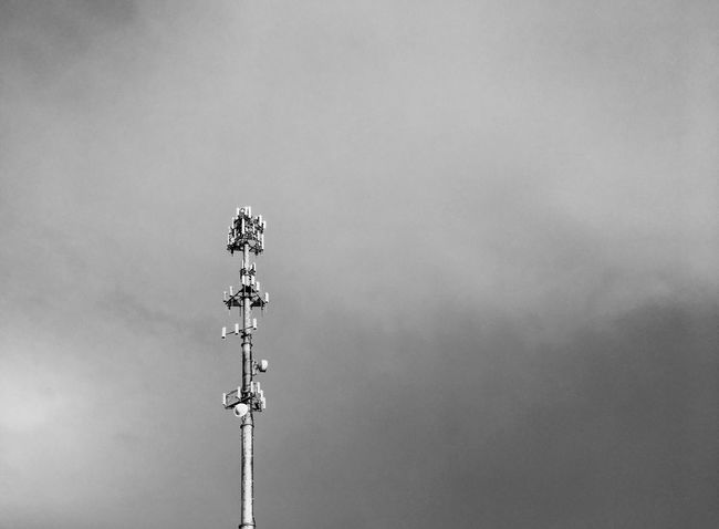 Lonely urban tree Sky Low Angle View Nature No People Communication Cloud - Sky Outdoors Metal Copy Space Architecture Day Built Structure Technology Tower Tall - High Broadcasting Global Communications Connection