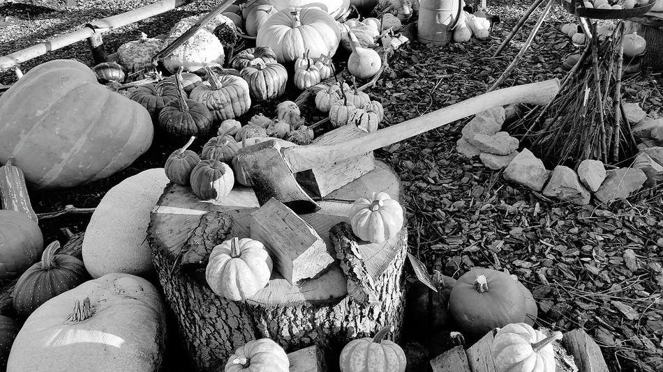 Halloween Pumpkins Halloween Scene Hatchet Pumpkin Patch Pumpkin Camp Fire Different Sizes Display Ready For Halloween Halloween Pumpkins Black And White Photography Black & White Black And White