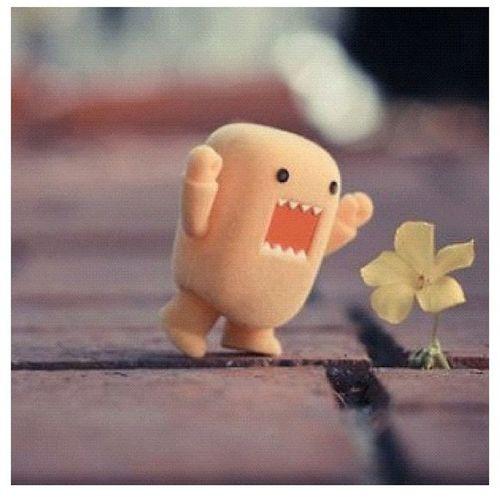So Cute(:
