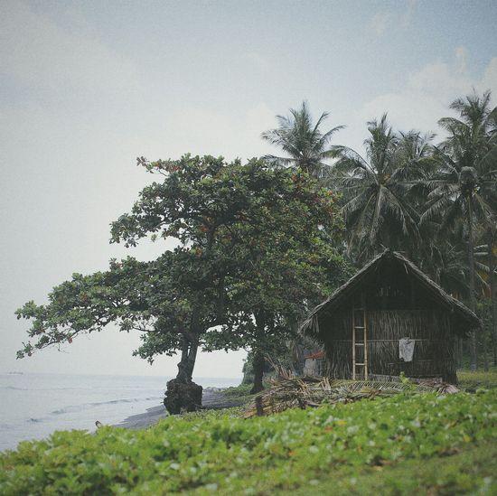 Beach Photography EyeEm Indonesia Wonderful Indonesia Melancholic Landscapes Popular Photos Landscape_photography Getting Inspired Urban Landscape Lombok Island Nature_collection