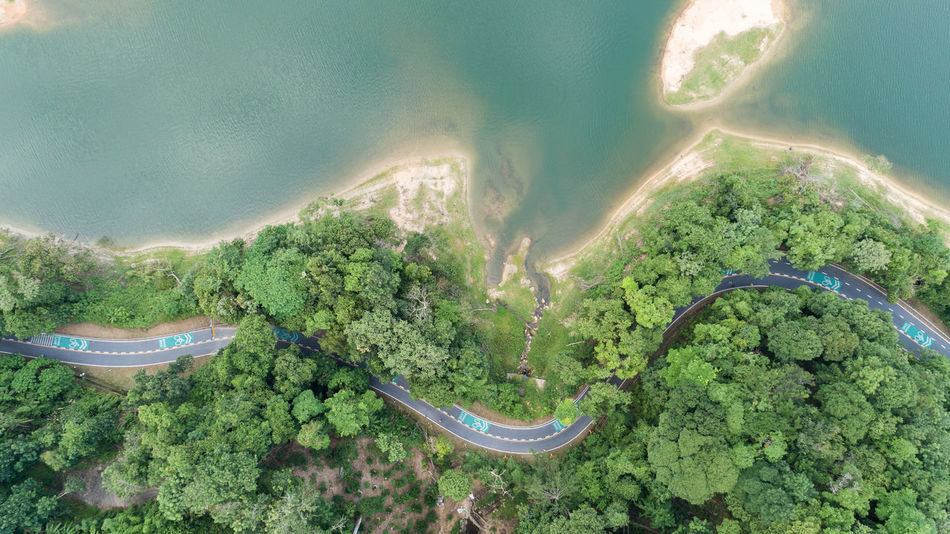 Aerial View Beauty In Nature Day Environment Green Color Growth High Angle View Land Landscape Mountain Nature No People Non-urban Scene Plant Road Scenics - Nature Tranquil Scene Tranquility Transportation Tree