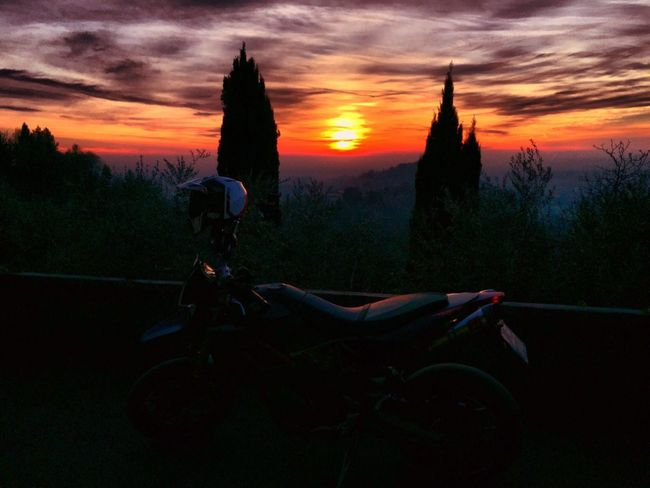 Aprilia o aprila ?¿ Sunset Tree Nature Sky Cloud - Sky One Person Beauty In Nature Outdoors Landscape Scenics Human Body Part One Woman Only People Day Aprilia Motorcycle