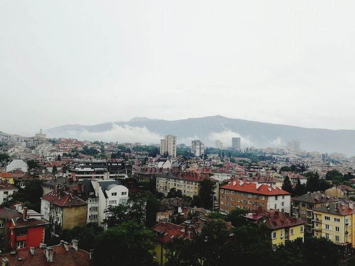 Vitosha from the 10th floor City Centre After Summer Rain Dry Fog Mountain Green City Urban Green City Cityscape Urban Skyline Sky Architecture Building Exterior Residential District Human Settlement Residential Building TOWNSCAPE Residential Structure