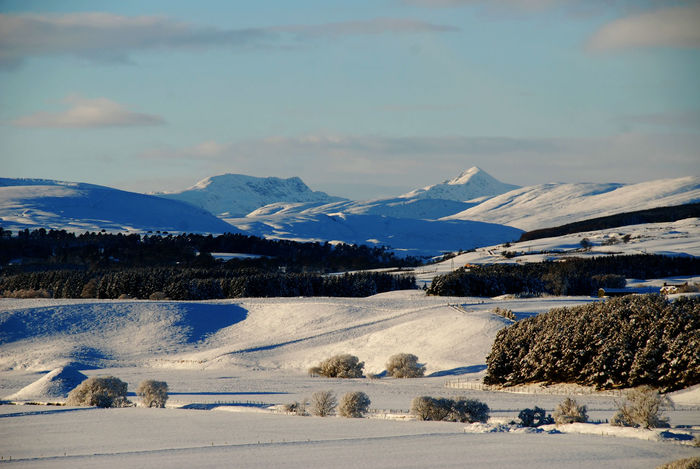 Ben Vorlich Blackford, Perthshire Stuc A'Chroin Beauty In Nature Cold Temperature Day Lake Landscape Mountain Mountain Range Nature No People Outdoors Rural Scene Scenics Sky Snow Snow Covered Tranquil Scene Tranquility Tree Water Winter