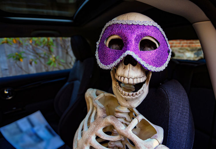 Close-up of skeleton wearing purple mask in car